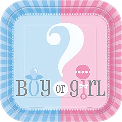 10 Paper Plates Gender Reveal 17cm